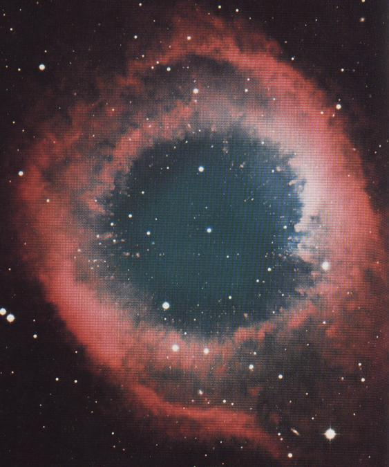 supernova 1987a discovery - 563×675